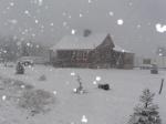 Snow falling!